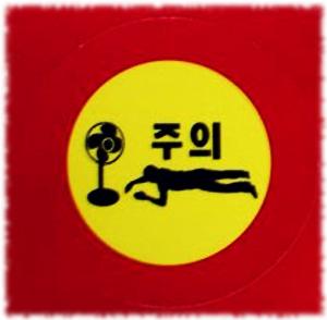 South Korean Fan Death Explained